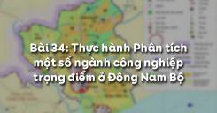 Bài 34: Thực hành Phân tích một số ngành công nghiệp trọng điểm ở Đông Nam Bộ