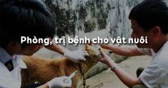 Bài 46: Phòng, trị bệnh cho vật nuôi