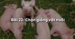 Bài 23: Chọn giống vật nuôi