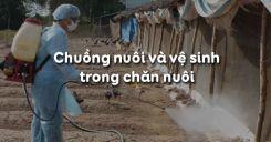 Bài 44: Chuồng nuôi và vệ sinh trong chăn nuôi