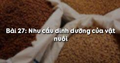 Bài 28: Nhu cầu dinh dưỡng của vật nuôi