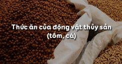 Bài 52: Thức ăn của động vật thủy sản (tôm, cá)