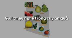 Bài 1: Giới thiệu nghề trồng cây ăn quả