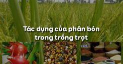 Bài 7: Tác dụng của phân bón trong trồng trọt