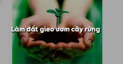 Bài 23: Làm đất gieo ươm cây rừng