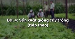 Bài 4: Sản xuất giống cây trồng (tiếp theo)