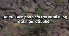Bài 10: Biện pháp cải tạo và sử dụng đất mặn, đất phèn