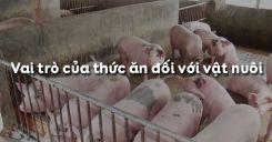 Bài 38: Vai trò của thức ăn đối với vật nuôi