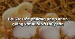 Bài 25: Các phương pháp nhân giống vật nuôi và thủy sản