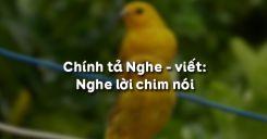 Chính tả Nghe - viết: Nghe lời chim nói
