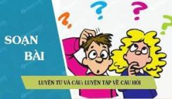Luyện từ và câu: Luyện tập về câu hỏi