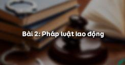 Bài 2: Pháp luật dân sự (Những chế định cụ thể của pháp luật dân sự)