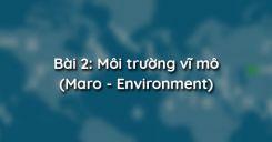 Bài 2: Môi trường vĩ mô (Maro - Environment)