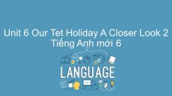 Unit 6: Our Tet Holiday - A Closer Look 2