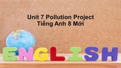 Unit 7: Pollution - Project