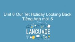 Unit 6: Our Tet Holiday - Looking Back