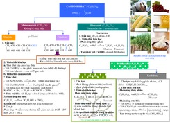 Lí thuyết Chương Hidrocacbon Hóa học 12 bằng hình vẽ