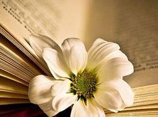 Hướng dẫn soạn bài Một thời đại trong thi ca - Ngữ văn 11