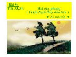 Hai cây phong - Ngữ văn 8