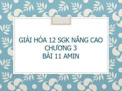Giải Hóa 12 SGK nâng cao Chương 3 Bài 11 Amin