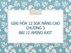 Giải Hóa 12 SGK nâng cao Chương 3 Bài 12 Amino axit