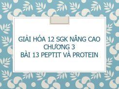 Giải Hóa 12 SGK nâng cao Chương 3 Bài 13 Peptit và Protein