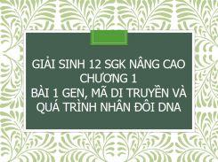 Giải Sinh 12 SGK nâng cao Chương 1 Bài 1 Gen, mã di truyền và quá trình nhân đôi DNA