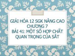 Giải Hóa 12 SGK nâng cao Chương 7 Bài 41 Một số hợp chất quan trọng của Sắt