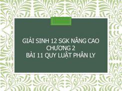 Giải Sinh 12 SGK nâng cao Chương 2 Bài 11 Quy luật phân ly