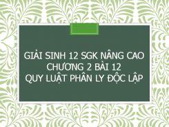 Giải Sinh 12 SGK nâng cao Chương 2 Bài 12 Quy luật phân ly độc lập
