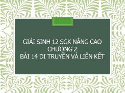 Giải Sinh 12 SGK nâng cao Chương 2 Bài 14 Di truyền và liên kết