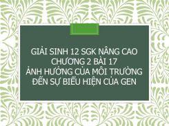 Giải Sinh 12 SGK nâng cao Chương 2 Bài 17 Ảnh hưởng của môi trường đến sự biểu hiện của gen