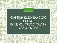 Giải Sinh 12 SGK nâng cao Chương 3 Bài 20 Cấu trúc di truyền của quần thể