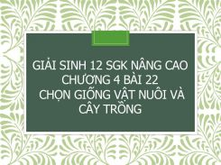 Giải Sinh 12 SGK nâng cao Chương 4 Bài 22 Chọn giống vật nuôi và cây trồng