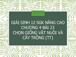 Giải Sinh 12 SGK nâng cao Chương 4 Bài 23 Chọn giống vật nuôi và cây trồng (tt)