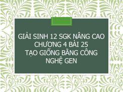 Giải Sinh 12 SGK nâng cao Chương 4 Bài 25 Tạo giống bằng công nghệ gen