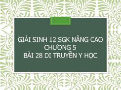 Giải Sinh 12 SGK nâng cao Chương 5 Bài 28 Di truyền y học