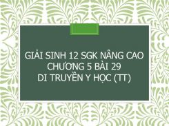Giải Sinh 12 SGK nâng cao Chương 5 Bài 29 Di truyền y học (tt)