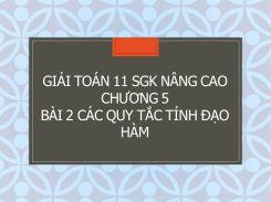Giải Toán 11 SGK nâng cao Chương 5 Bài 2 Các quy tắc tính đạo hàm