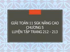 Giải Toán 11 SGK nâng cao Chương 5 Luyện tập trang 212 - 213