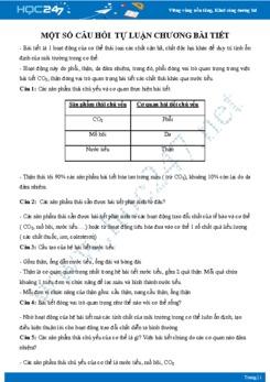 Câu hỏi tự luận ôn tập chương Bài tiết Sinh học 8 có đáp án