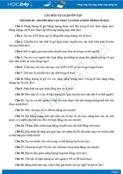 Câu hỏi tự luận ôn tập Chương III- Sinh học 10