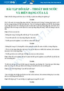 Hướng dẫn giải chi tiết 18 câu hỏi tự luận ôn tập kiến thức Hô hấp - thoát hơi nước và biến dạng của lá Sinh học 6