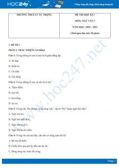 Bộ 2 đề thi Học kì 1 môn Ngữ văn 7 năm 2020 Trường THCS Lý Tự Trọng