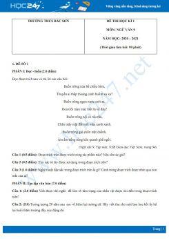 Bộ 2 đề thi Học kì 1 môn Ngữ văn 9 năm 2020 Trường THCS Bắc Sơn