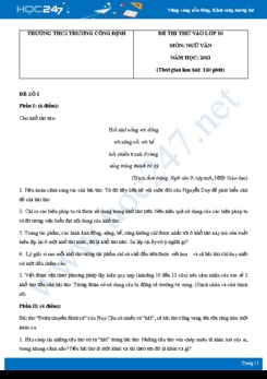 Bộ 5 đề thi thử vào lớp 10 THPT môn Ngữ văn năm 2021 Trường THCS Trương Công Định