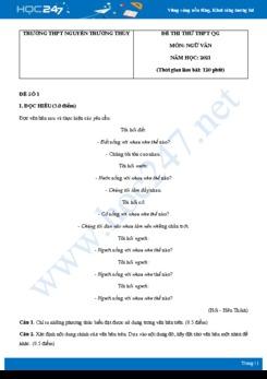 Bộ 5 đề thi thử THPT QG môn Ngữ văn năm 2021 trường THPT Nguyễn Trường Thúy
