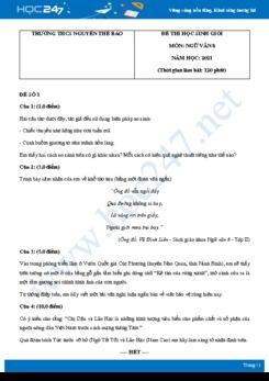 Bộ 5 đề thi học sinh giỏi môn Ngữ văn 8 năm 2021 Trường THCS Nguyễn Thế Bảo