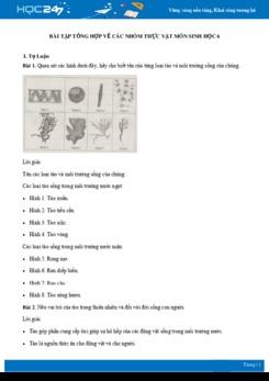 Bài tập tổng hợp về Các Nhóm Thực Vật môn Sinh học 6 có đáp án